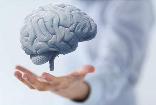 سلامت مغز با رژیم غذایی کم پروتئین و کم کالری