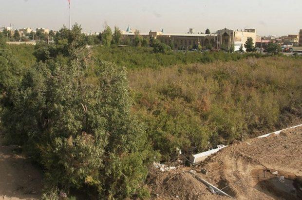 آخرین جزئیات از وضعیت باغ سالاریه قم
