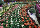 سومین نمایشگاه گل و گیاه در قم برگزار میشود