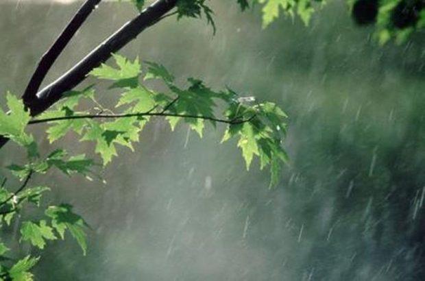 ۳۰ درصد بارش یک سال زراعی قم در ۲۴ ساعت تأمین شد/ افزایش ۴۰ درصدی بارشها نسبتبه میانگین بلند مدت
