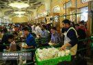 توزیع ۴۰ هزار پرس غذای گرم به مناسبت عید غدیر در حرم حضرت معصومه(س)