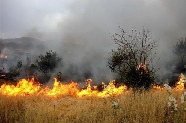 آتشسوزی ۳۲۱ هکتار از مراتع قم در تعطیلات عید فطر