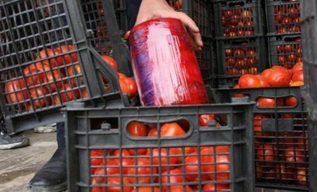 کشف بیش از ۵۶ کيلوگرم ترياک با طعم گوجه فرنگی در قم