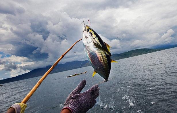ماهیگیران متخلف در قم دستگیر شدند
