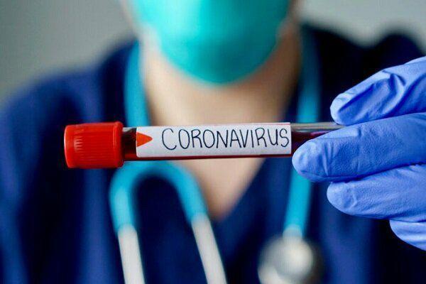 مبتلایان کرونا در قم ۱۱۷۸ نفر شدند/ بستری ۶۰۰ بیمار کرونایی در مراکز درمانی قم
