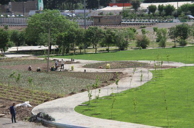 بوستان حنانه منطقه ۲ بهزودی افتتاح میشود/ اجرای پیست استاندارد دوچرخهسواری در این بوستان