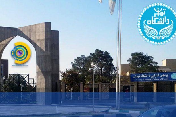 برگزاری مجازی کلاسهای پردیس فارابی دانشگاه تهران تا پایان ترم