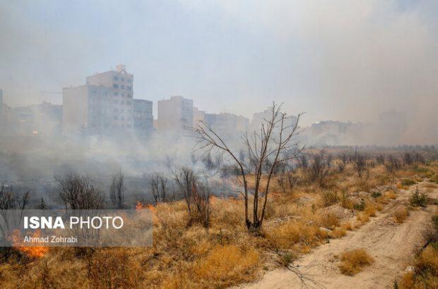 جزئیات آتشسوزی محوطه فضای سبز جامعه الزهرا(س)
