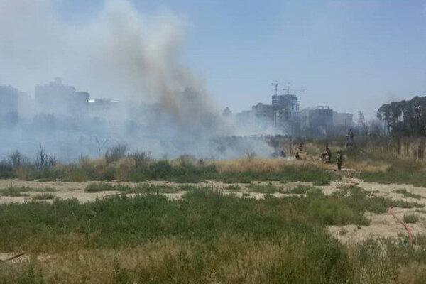 آتشسوزی فضای سبز جامعه الزهرا(س) مهار شد/ گرمای هوا عامل احتمالی حریق