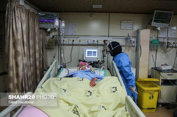 جدیدترین آمار بستری بیماران کرونایی در قم