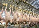 افزایش ۱۸ درصدی مصرف مرغ در قم/ در تأمین مرغ هیچ مشکلی وجود ندارد!