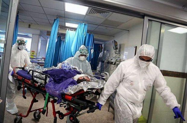 جدیدترین آمار بیماران کرونایی قم