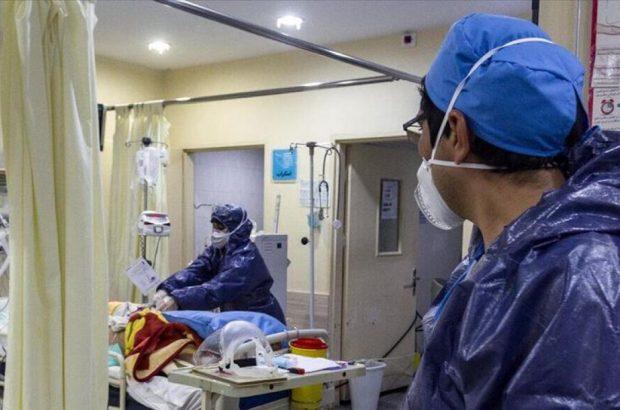 آخرین آمار بیماران کرونایی قم/ تشخیص دو مورد کرونا انگلیسی جدید