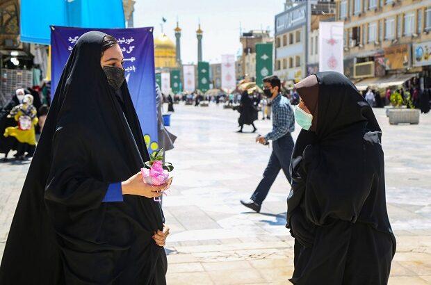 اهدای گل به دختران قمی در سالروز ولادت حضرت معصومه(س) +تصاویر