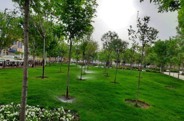 بهسازی فضای سبز بوستان «لاله» قم